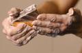 Muddy Carrots Seife
